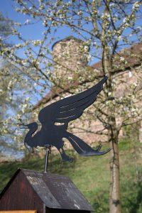Wandervogel unterhalb der Burg Ludwigstein 2009 © Gerd Zürner